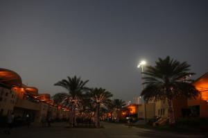 F1 GP Bahrain: Prove Libere 2 in Diretta (Live e Foto)